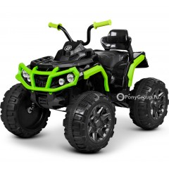 Детский квадроцикл Grizzly T001MP (резиновые колеса, кожа)